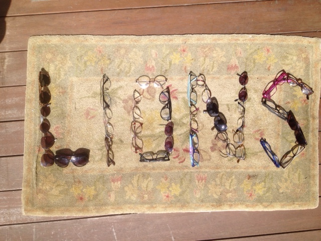 Eye Glasses spelling out lions